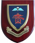 Combined Operations Military Wall Plaque Mess Shield (2)